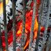 Tout savoir sur le bois de chauffage